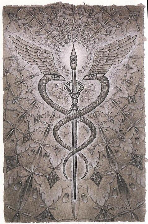 Reclaiming Sacred Myths Symbolism Snake Edition Bodaishin